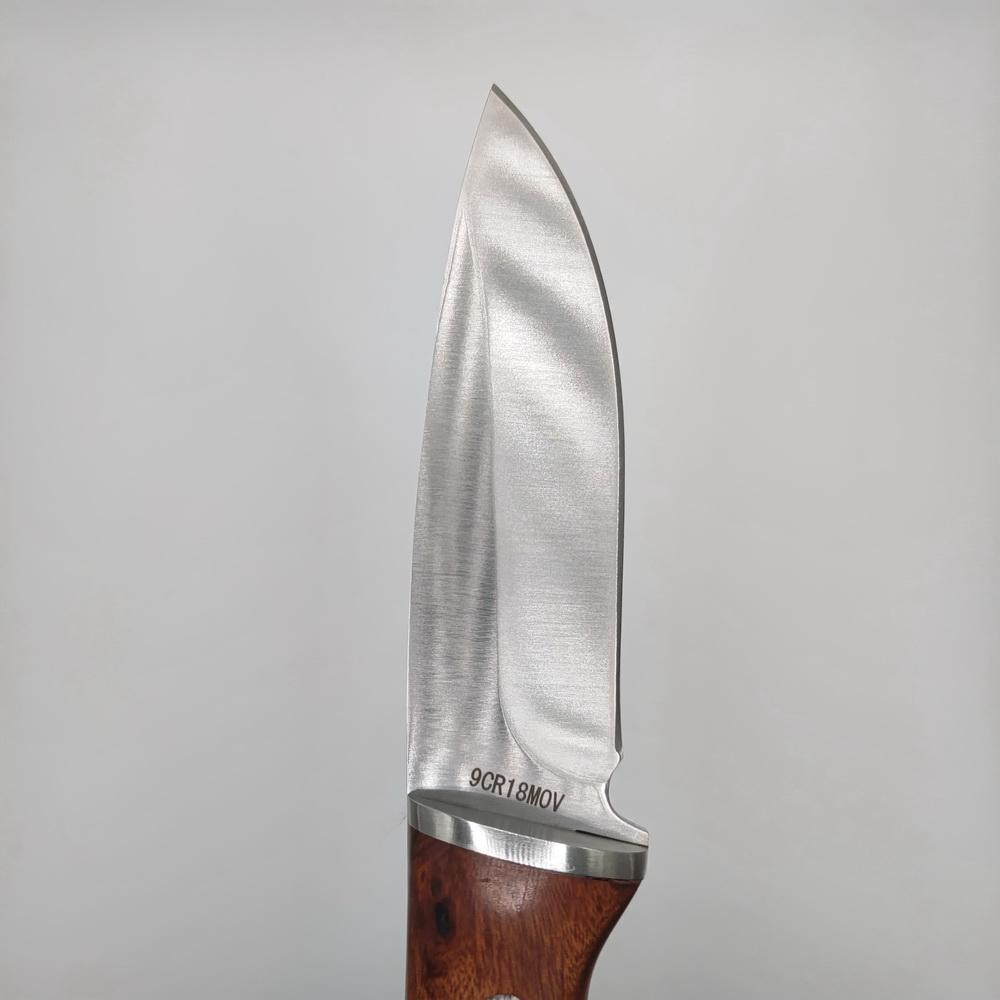 Pegasi - Mirror - Lovecký nůž s koženým pouzdrem
